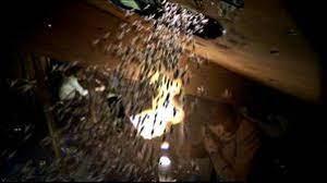 Swarm of bugs flying through a hole.